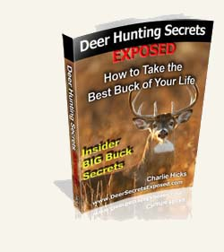 deer hunting secrets ebook picture and link